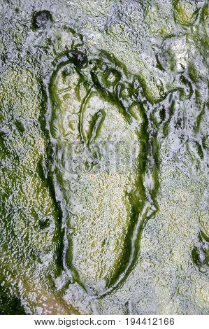close up footprint track on the mud