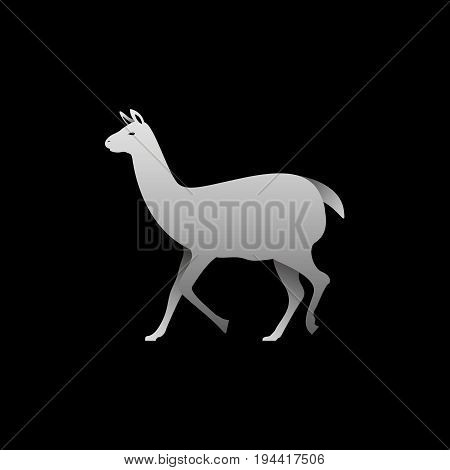 Silhouette of a gray lama standing. Lama side view profile.