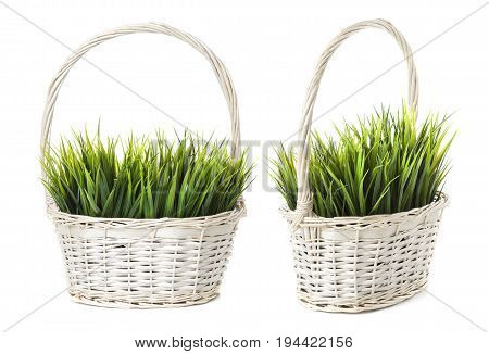 Grass in basket isolated on white background