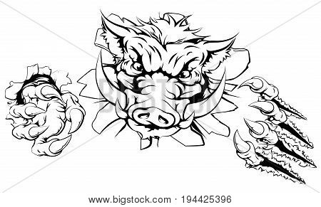 Boar claw breakthrough concept illustration of a boar mascot smashing out of the background
