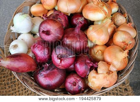 Red And White Onions For Sale By The Fruit Grower