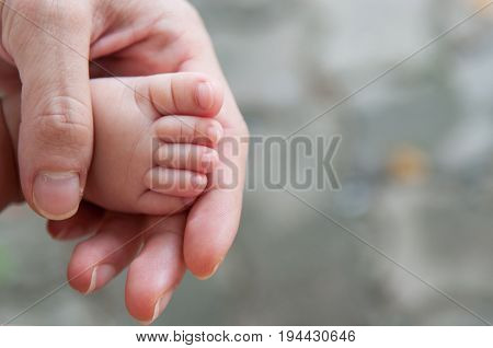 Close up of cute asian girl newborn foot with hands of her mom / dad. Parenthood. Motherhood. Fatherhood. Family.