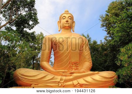 big Meditation Buddha statue in a forest temple, Thailand