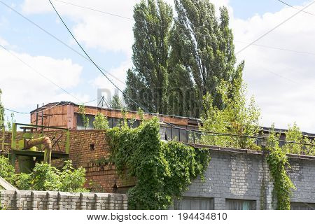 destroyed commercial building. Old factory with red brick and grassy