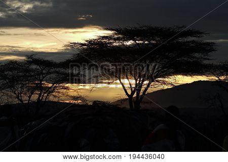 A Sunset in the Masai Mara of Kenya