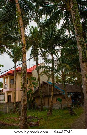 Expensive House In The Countryside Of Palm Trees In The Philippines. Pandan, Panay