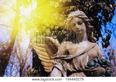 wonderful angel in the rays of the sun (architecture statue archetype religion faith)