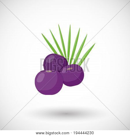 Acai berries vector flat icon Flat design of superfood or healthy eating object with round shadow isolated on the white background cute vector illustration with reflections