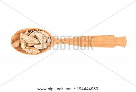 Uzbek Almond Spoon