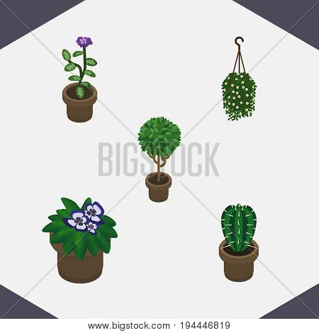 Isometric Flower Set Of Blossom, Peyote, Flower And Other Vector Objects. Also Includes Plant, Pot, Flower Elements.