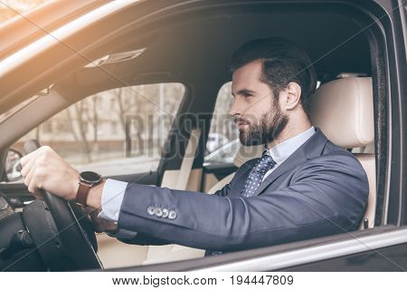 Young business person test drive new vehicle driving