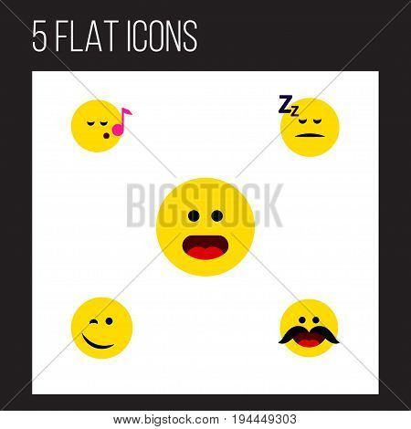 Flat Icon Gesture Set Of Descant, Winking, Wonder And Other Vector Objects. Also Includes Song, Face, Sleeping Elements.
