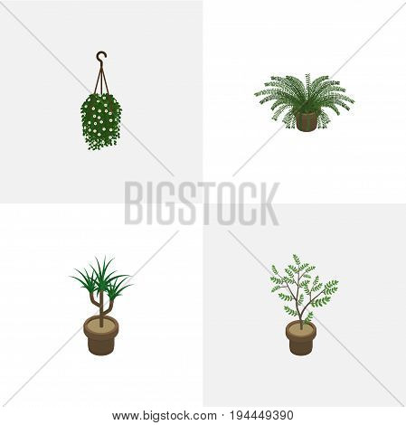 Isometric Houseplant Set Of Plant, Blossom, Houseplant And Other Vector Objects. Also Includes Fern, Plant, Houseplant Elements.