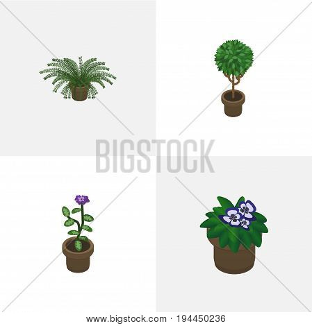 Isometric Plant Set Of Plant, Flowerpot, Tree And Other Vector Objects. Also Includes Flowerpot, Flower, Plant Elements.