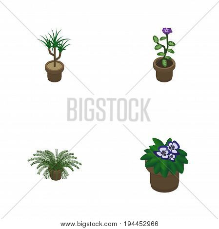 Isometric Flower Set Of Flowerpot, Houseplant, Flower And Other Vector Objects. Also Includes Flowerpot, Botany, Flower Elements.