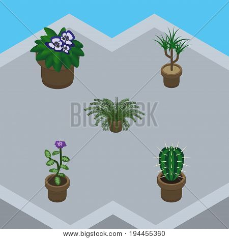 Isometric Houseplant Set Of Flower, Flowerpot, Houseplant And Other Vector Objects. Also Includes Peyote, Pot, Flowerpot Elements.