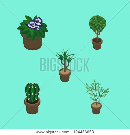 Isometric Plant Set Of Peyote, Fern, Flowerpot And Other Vector Objects. Also Includes Plant, Flower, Botany Elements.