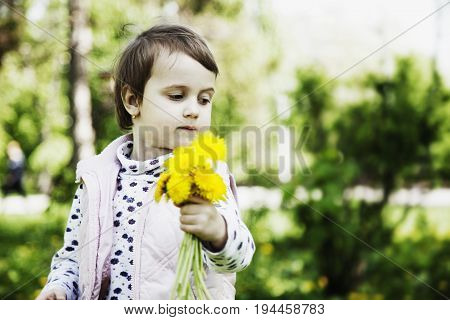 Happy childhood. The little girl collects bouquet of wildflowers. (Recreation summer nature vacation concept)