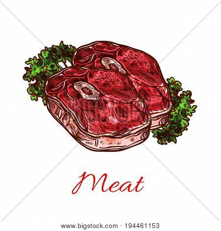 Meat steak, fresh food sketch. Beef shank, lamb steak or pork shoulder roast with bone, served with vegetable greens isolated symbol for butcher shop, meat store, grill menu design