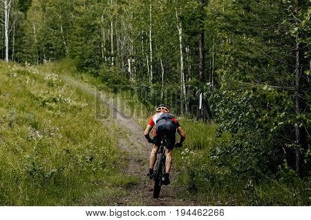 one male athlete cyclist mountainbike riding forest trail