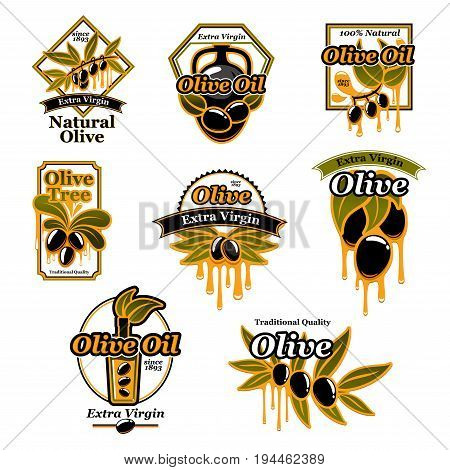 Olive oil premium product trademark label set. Olive tree branch with black fruit, oil drop and green leaf badges, decorated by ribbon banner for olive oil bottle or can label design