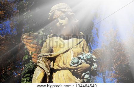 Majestic view of statue of golden angel illuminated by sunlight against a background of dark foliage. Dramatic unusual scene. Beauty statue. Retro filter and vintage style.