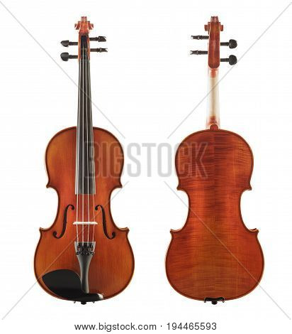 Cello Back And Front View Isolated On White Background