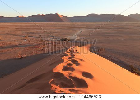 Dune 45 At Sossusvlei, Namib Naukluft National Park, Namibia