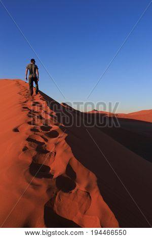 Man  On Sand Dune In Desert During Sunrise.  Sossusvlei, Namib Naukluft National Park, Namibia