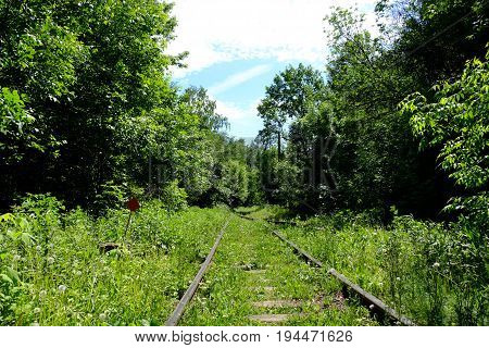 Old railways, rusted and grassy, with small red roadsign, crossing in the forest of green trees and bushes