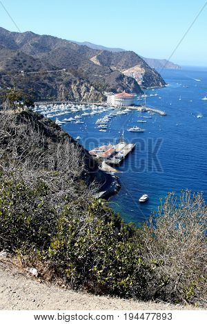 LOS ANGELES - APR 26:  Catalina Harbour at Catalina Film Festival on August 26, 2014 in Avalon, Catalina Island, CA