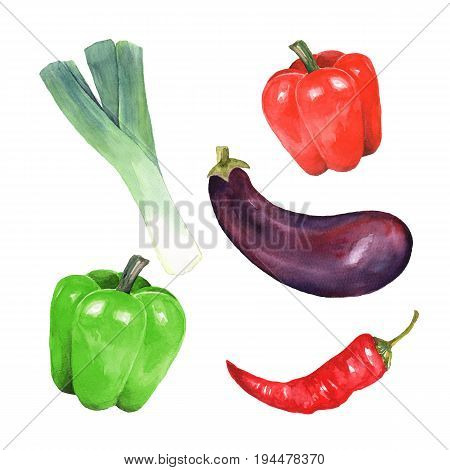 Watercolor vegetables isolated on white background. Watercolor illustration