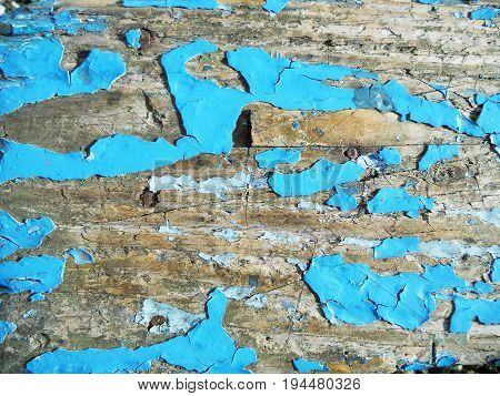 The photo shows background texture wood, closeup fracture.