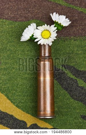 Chamomile In Bullet Case.on Military Background.concept Photography No War.make Love No War.top View