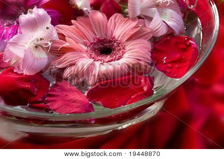 flower water for the spa