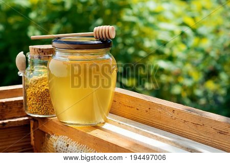 A jar of honey and a jar of bee pollen in the hive. Honeycomb. Beekeeping products