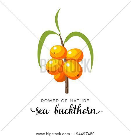 Orange sea buckthorn berry flat icon with inscription colorful vector illustration of eco food isolated on white.
