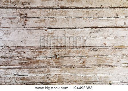 Old scratched tree log wall background closeup