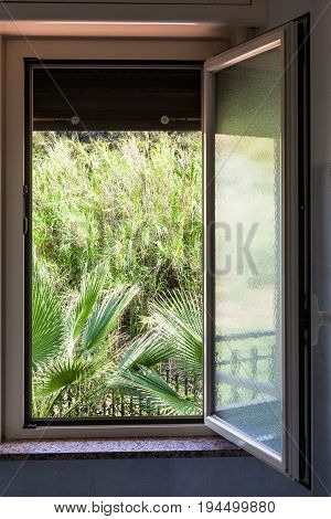 View Of Green Garden From Open Home Window