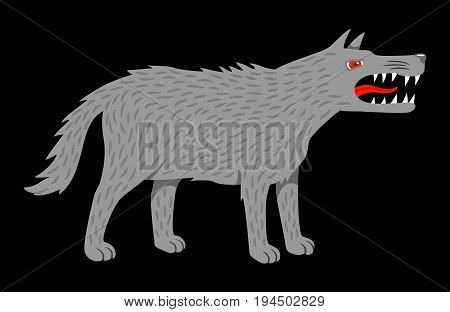 Angry evil wolf. Vector illustration isolated on black