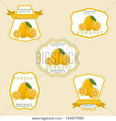 Abstract vector illustration logo for whole ripe fruit kumquat.