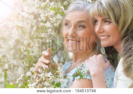 Family portrait of beautiful young woman with her mother near blooming tree