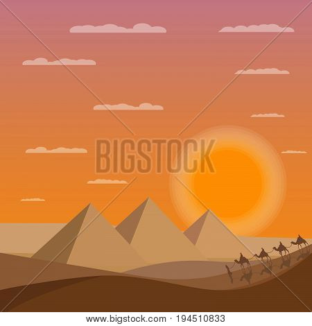 Caravan of camels near Egypt pyramids. Desert sands with pyramids.