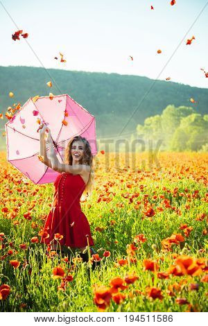 girl. woman with long curly hair in red dress hold pink umbrella in field of poppy seed flower on green stem with petal in sky on natural background summer drug and love intoxication opium