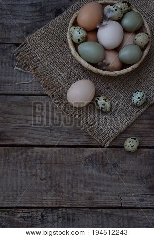 Set Of Different Types Birds Eggs From Chicken, Pheasant And Quail With Feathers On A Wooden Backgro