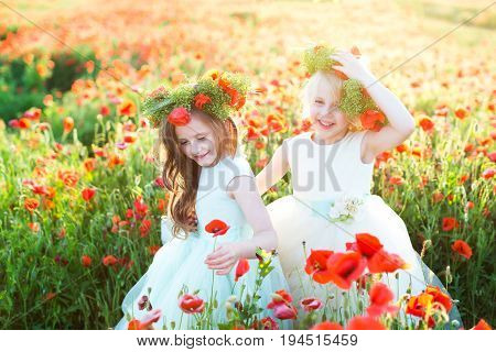 friendship, wedding, party, freedom, childhood concept - small adorable cousins, wearing sleeveless dresses in different colors and great wreaths, picking up poppies and laughing