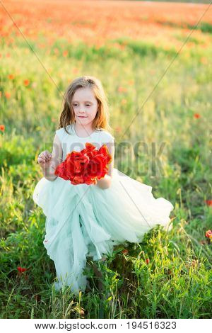 flora, freedom, nature, childhood, kid fashion concept - little elegant lady with dark curly hair and enigmatic smile stepping through the field, holding rich red bunch of wild flowers