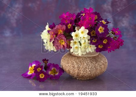 bouquet of flowers in the spring primroses