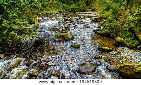 Rocks, trees and boulders in the Salmon habitat of the fast flowing Kanaka Creek in Kanaka Creek Regional Park near the town of Maple Ridge in British Columbia, Canada