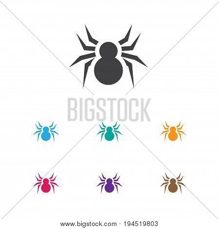 Vector Illustration Of Animal Symbol On Spider Icon. Premium Quality Isolated Arachnid Element In Trendy Flat Style.